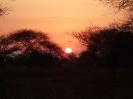 Sunsets_7